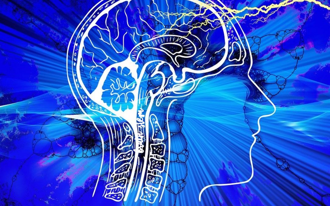 How to Train the Brain to Manifest Quickly