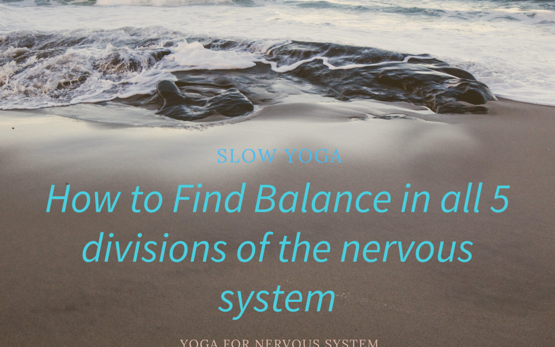 How to Find Balance in all 5 Divisions of the Nervous System